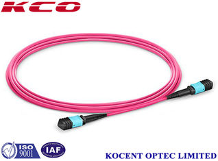 China 0.2dB Insertion Loss MPO MTP Patch Cord 3m 5m 10m 50 / 125 Core LSZH Violet supplier