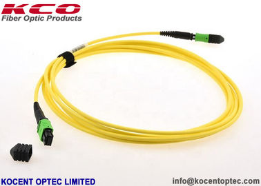 China 24 Corer MPO MTP Patch Cord SM 9/125 PVC LSZH Type A / B / C 0.2dB Insertion Loss supplier